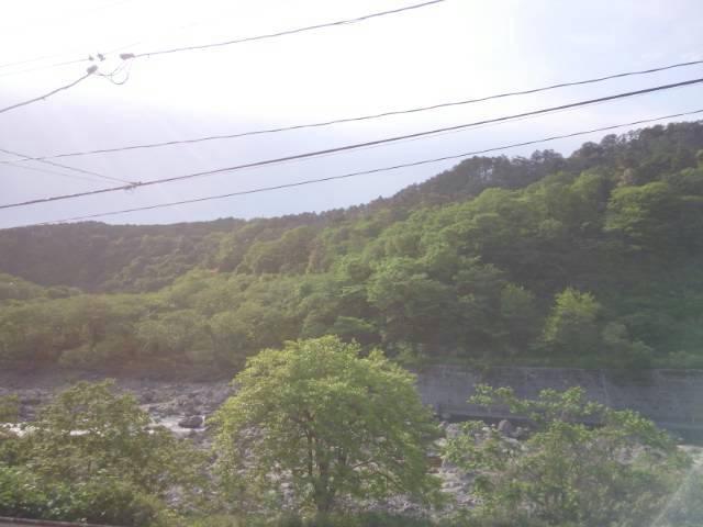 事務所窓からの景色夏